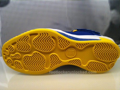 air-jordan-2010-outdoor-laney-high-5