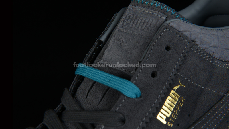 FL_Unlocked_Puma_Lab_03