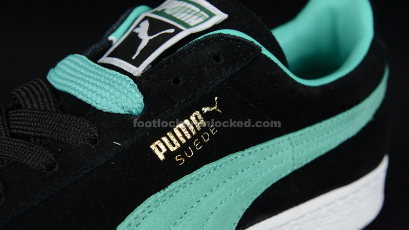 FL_Unlocked_Puma_Lab_09