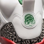 Foot_Locker_Unlocked_Jordan_Spizike_OG_5