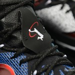 Foot-Locker-Nike-LeBron-12-What-The-11